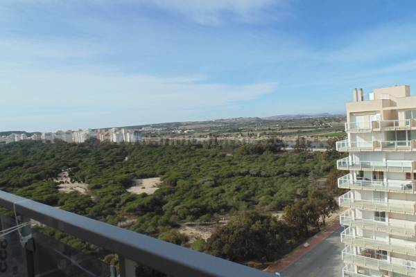 Penthouse - New Build - Guardamar del Segura - Guardamar del Segura
