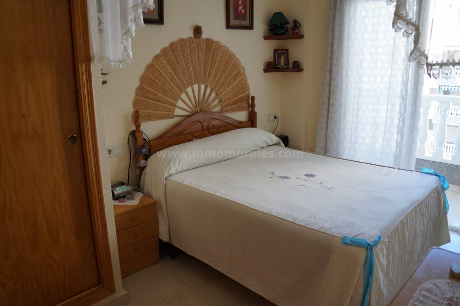 Coast and Beach - Apartment  - Guardamar del Segura