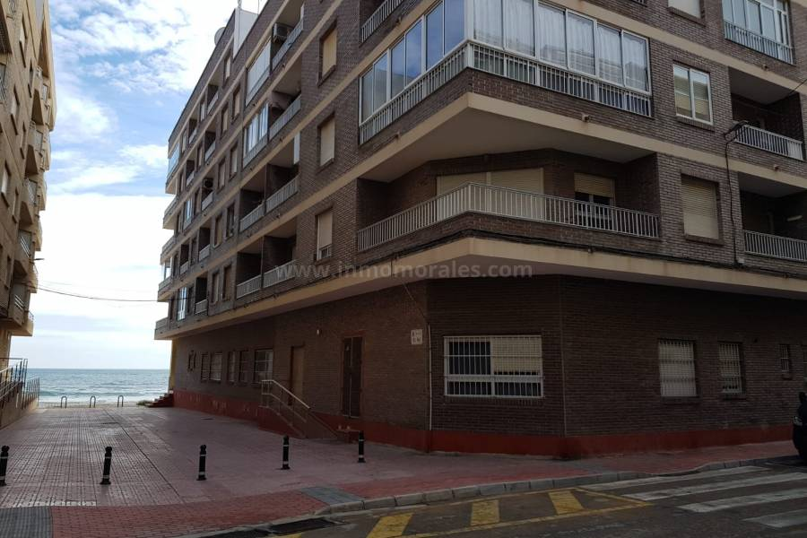 Coast and Beach - Apartment /Flat - La Mata