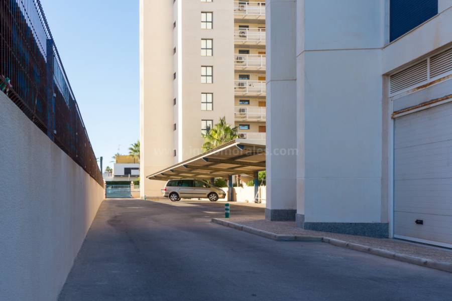 Coast and Beach - Apartment /Flat - Torrevieja - La Veleta