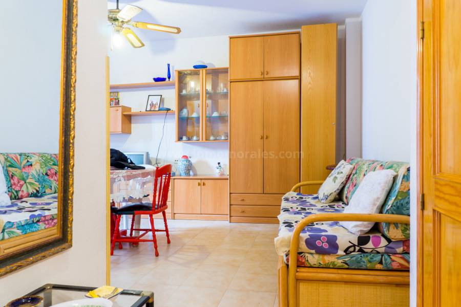 Coast and Beach - Studio - Torrevieja - Playa del Acequion