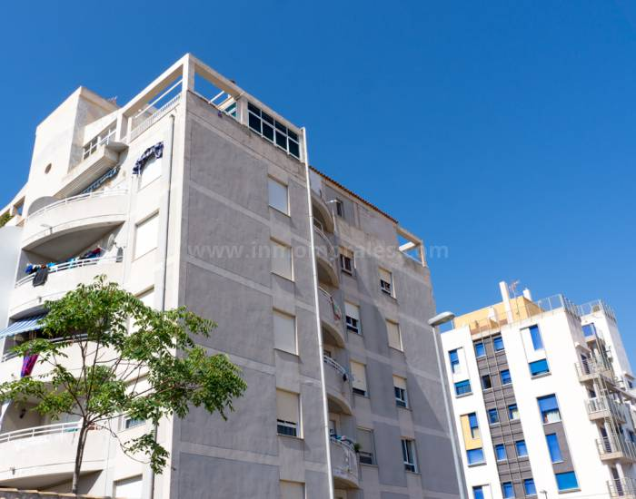 Apartment /Flat - Coast and Beach - Torrevieja - Nueva Torrevieja