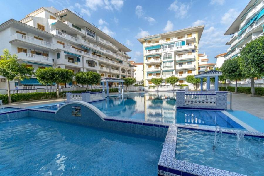 Coast and Beach - Apartment  - La Mata